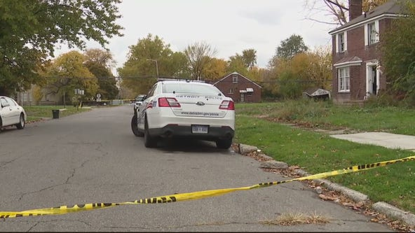 Detroit 2-year-old girl attacked by unknown dog that entered home, hurt when dad shoots dog