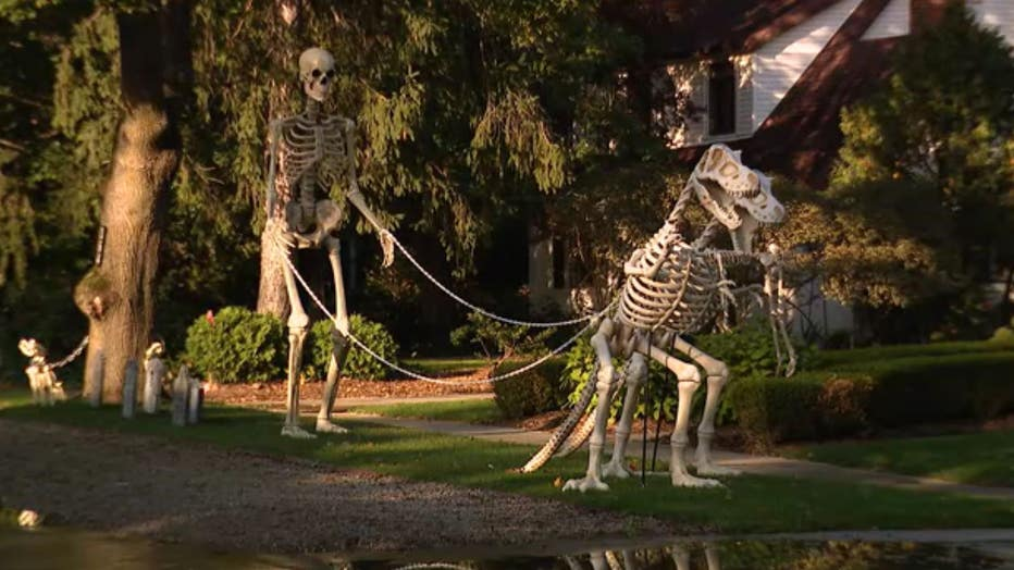 A 12-foot skeleton stands in a front lawn, walking two larger-than-life dinosaur skeletons