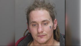 Suspect wanted for hitting Madison Heights cop with car and escaping police chase