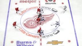 NHL, players reach tentative deal for 56-game season