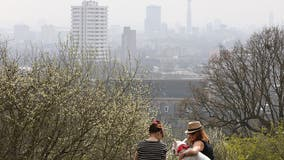 Air pollution ruled as cause of 9-year-old's death in UK