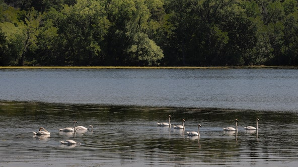 Michigan DNR buys energy for seven state parks