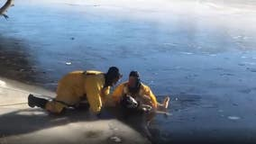 VIDEO: Alpena firefighters in northern Michigan rescue dog from icy river
