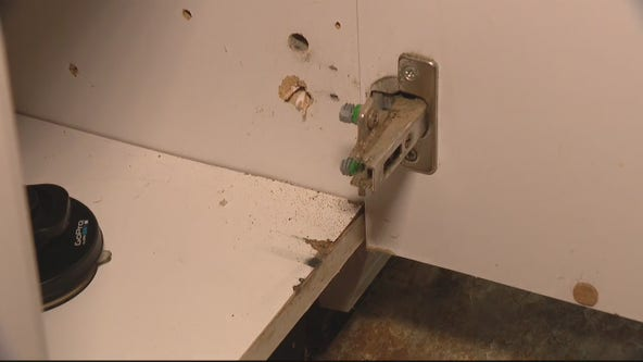 Jill of All Trades: Tackling your home's problem hinges
