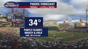 A chilly Tigers opening day in store