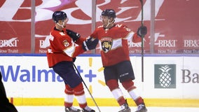 Verhaeghe paces Panthers over Red Wings, 4-1