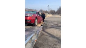 WATCH: Southfield tow truck driver frees deer pinned by car
