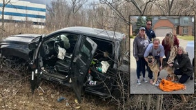 Dog reunited with family after running from I-696 rollover crash