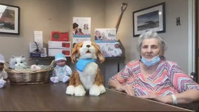 Robotic pets provide comfort, companionship to seniors in West Bloomfield nursing home
