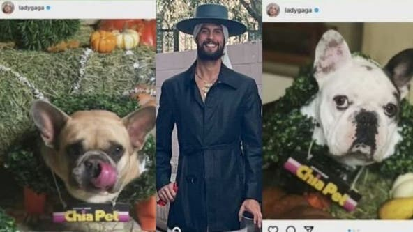 Lady Gaga's dog walker Ryan Fischer speaks out for first time since shooting
