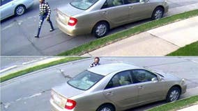 Police seek driver after hit-and-run on Telegraph in Dearborn Heights
