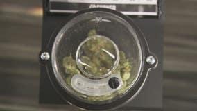 Shango Hazel Park recreational marijuana store opens 'crown jewel' of locations