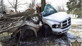 One dead, another hospitalized after truck strikes tree in Lapeer County