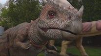Dino stroll kick off starts here in Michigan