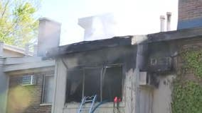 Dog killed in Clawson apartment fire