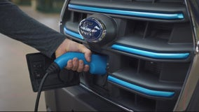 Ford investing billions in bet on electric vehicles