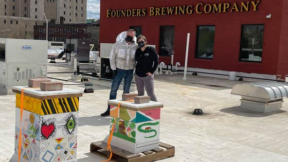 Founders Brewing partners with Bees in the D to add hives to roof of Detroit Taproom