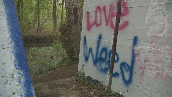 Rampant vandalism at Commerce Twp park causes crackdown
