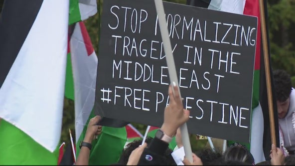 Day 2 of protest take place in Dearborn following the violence against Palestinians.