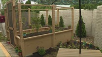 Maggie's Wigs 4 Kids opens up raised therapy garden for wig recipients