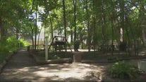 Detroit couple's backyard park offers safe space for kids