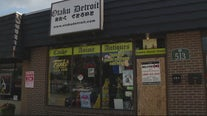 Thief steals thousands of dollars worth of rare Japanese anime figurines from Madison Heights store