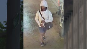 Person of interest photo released by police in attack on women in Ann Arbor