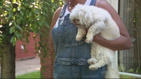 Dog found inside home with 2 dead bodies as police investigate their deaths