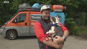 It was a rough week for dogs. The ThunderBus team is here with tips for pet anxiety
