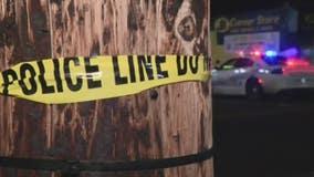 Detroit police expand mental health crisis response program