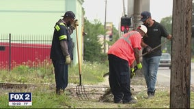 City of Detroit behind on clearing grass, trimming back trees due to rainy weather