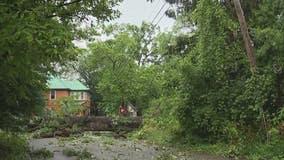 Cleanup underway after storm damage impacts Farmington area