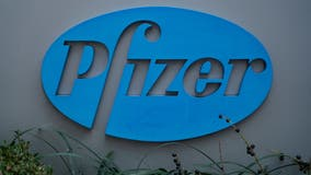 FDA to decide on full approval of Pfizer COVID-19 vaccine by January