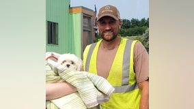 Animal cruelty investigation underway after small dog rescued from garbage truck in Michigan