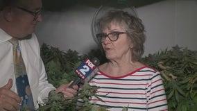 Pot growing grandma takes on Ypsilanti Twp. over medical marijuana operation in basement