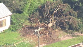 Trees uprooted, roofs ripped off, power out in most of Armada
