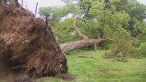 State of Emergency declared for Farmington, Farmington Hills, Southfield after severe thunderstorms