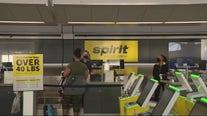 Spirit Airlines cancels 100s of flights, frustrating travelers