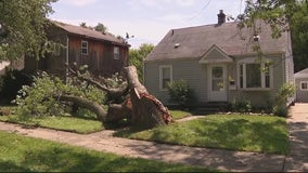 Severe thunderstorms rip through Metro Detroit, toppling trees and flooding streets