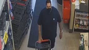 Westland police seek man who stole power tools from Ace Hardware
