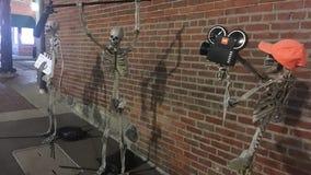 Life-sized skeletons return to transform downtown Northville into Halloween boneyard