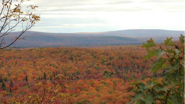 Michigan's peak fall colors are returning - why they change and the best ways to see them