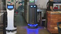 As restaurants deal with staff shortages, one is using robots to help out
