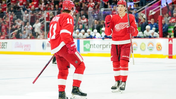 Greiss makes 40 saves as Red Wings beat Canucks 3-1