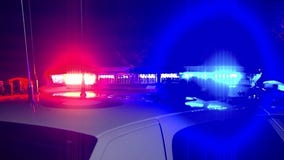 4 in custody after violent Lincoln Park robbery attempt