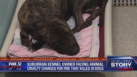 Operator of suburban kennel charged in fire that killed 29 dogs