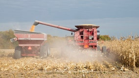 Illinois governor seeks agriculture disaster declaration