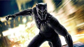 Marvel's Black Panther a 'watershed cinematic experience'