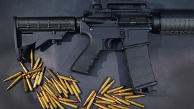 Deerfield assault weapons ban heads to State Supreme Court