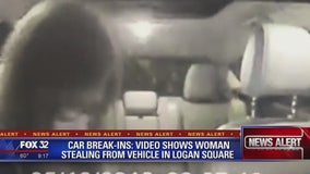 Video appears to show woman stealing from car in Logan Square